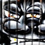 MELBOURNE - JUNE 29: Street art by unidentified artist. Melbourne's graffiti — Stock Photo #29447073