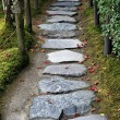 Stock Photo: Stone path