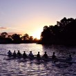 Rowers at Sunset on Adelaide's Torrens River — Stock Photo
