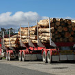 Stock Photo: Logging truck in Tasmania
