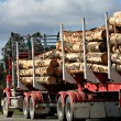 Logging Truck - Tasmania — Stock Photo