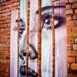 MELBOURNE - JUNE 29: Street art by unidentified artist.  Melbour — Foto Stock
