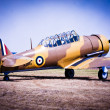Vintage Fighter Plane — Stock Photo #30281547