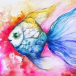 colorful fish — Stock Photo