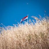 Croatian flag — Stock Photo