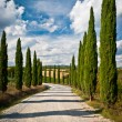 Tuscany — Stock Photo