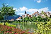 Frohnleiten - small city above Mur River in Styria, Austria. — Stock Photo
