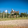 Stock Photo: Tuscany