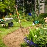 Garden — Stock Photo #27712819