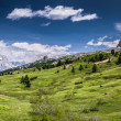 Dolomites — Stock Photo #31327121