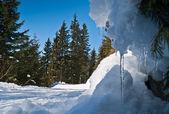 Alpina road — Stock Photo