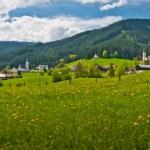 landskap — Stockfoto