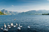 Traunsee — Stock Photo