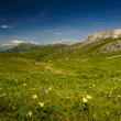 Dolomites — Stock Photo