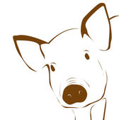 Young pig illustration — Stock Photo