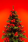 Green Christmas tree on red background. — Stock Photo