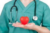 Doctor with red heart in hands — Stockfoto