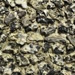 Flint Wall — Stock Photo #33963237