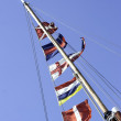 Ships Flags — Stock Photo #33968631