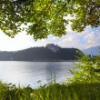 Stock Photo: Bled