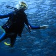 Scuba diving — Stock Photo #21096041