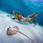 Snorkeling — Stock Photo #21113361