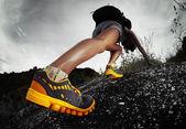 Wandelaar — Stockfoto