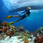 Freediving — Stock Photo