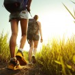Hikers — Stock Photo #40179153