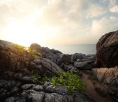 Rocky coast of Andaman sea. — Stock Photo