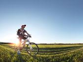 Rider — Stockfoto