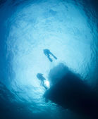 Two divers ascending to the water surface — Stock Photo