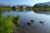 Seefeld — Stock Photo