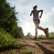 Young lady running on a rural road — Stock Photo #40195389