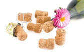 Corks, bottle of wine and flower — Stock Photo