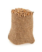 Grains of wheat in a sack — Stock Photo