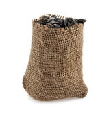 Pips of sunflower in a sack — Stock Photo