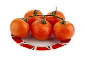 Fresh juicy tomatoes — Stock Photo