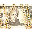Dollars and a chain — Stock Photo