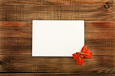 Postal with a bow — Stock Photo
