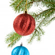 Fir-tree and balls — Stock Photo