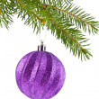 Branch of fir-tree and ball — Stockfoto