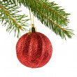 Stock Photo: Branch of fir-tree and ball