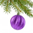 Branch of fir-tree and ball — Stock Photo #35927079