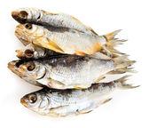 Dried fish — Stock Photo