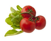 Tomatoes and lettuce — Stock Photo