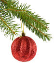 Branch of fir-tree and ball — Foto de Stock