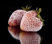 Frozen strawberry — Stock Photo