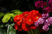 Flowers on a florist stall — Stock Photo