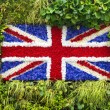 Green wall Union Jack — Stock Photo